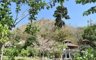 Chiang Mai Province